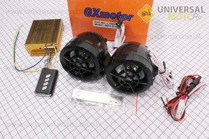 Колонки 2шт (черные) +МРЗ-USB/SD+FM-радио+пультДУ+сигнализация 703